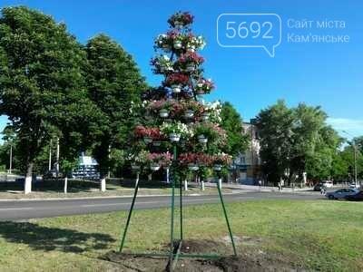 Центр Каменского украсили цветами, фото-4