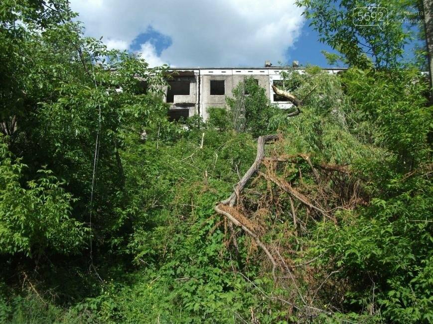 Как живут на развалинах в Каменском, фото-8