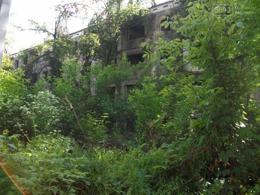 Как живут на развалинах в Каменском, фото-5