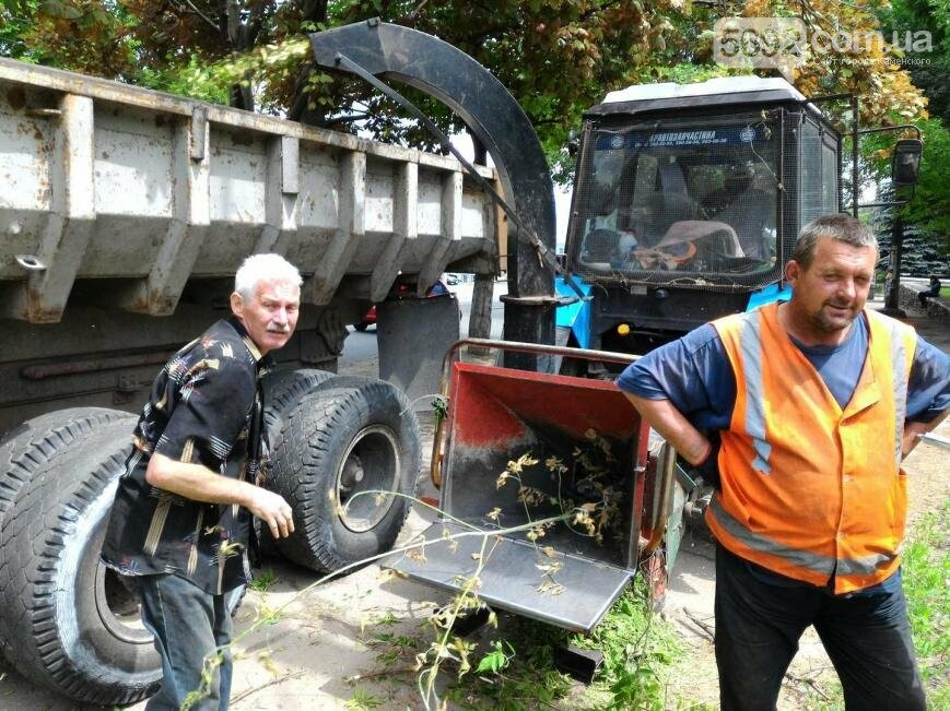 В Каменском избавляются от аварийных веток, фото-1