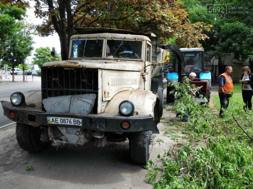 В Каменском избавляются от аварийных веток, фото-3