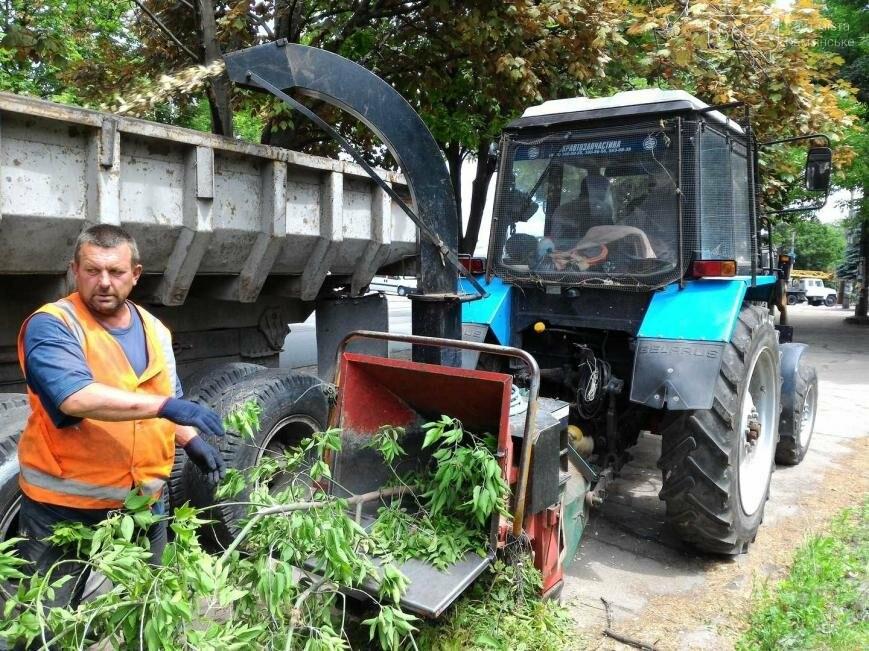В Каменском избавляются от аварийных веток, фото-4