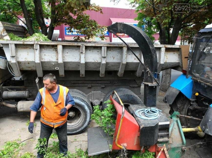 В Каменском избавляются от аварийных веток, фото-2