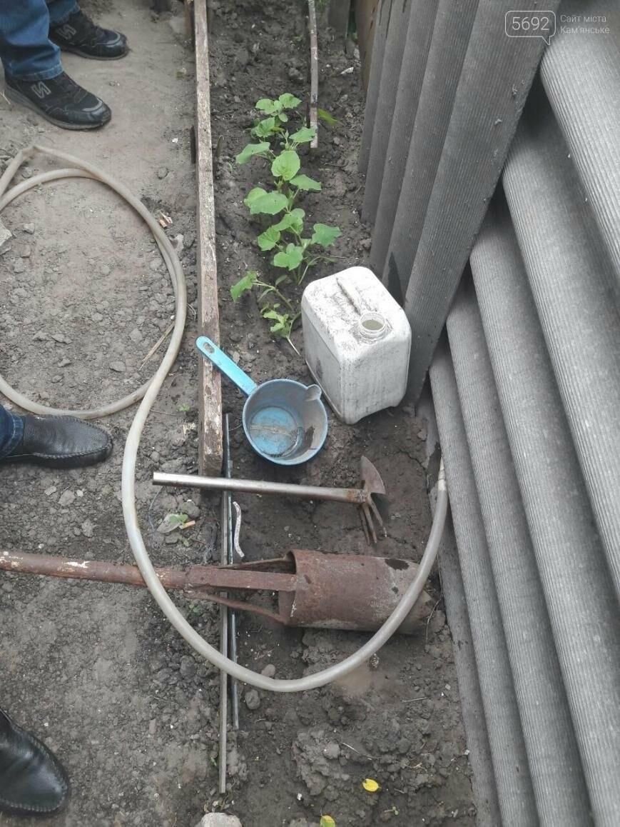 Полиция и прокуратура изъяли у каменчанина 24 куста конопли, фото-1