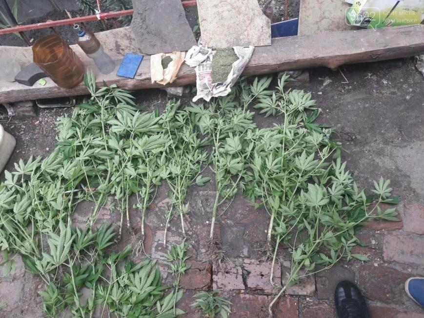 Полиция и прокуратура изъяли у каменчанина 24 куста конопли, фото-2