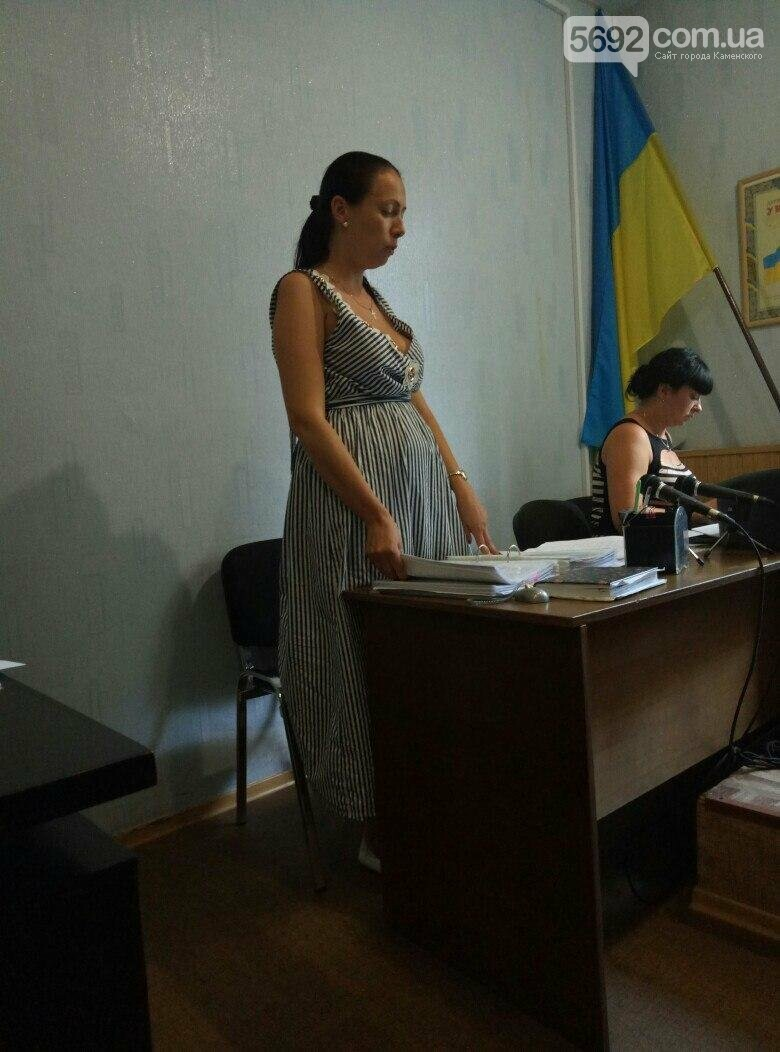 Суд не удовлетворил иск каменского депутата Дмитрия Пучкина, фото-1
