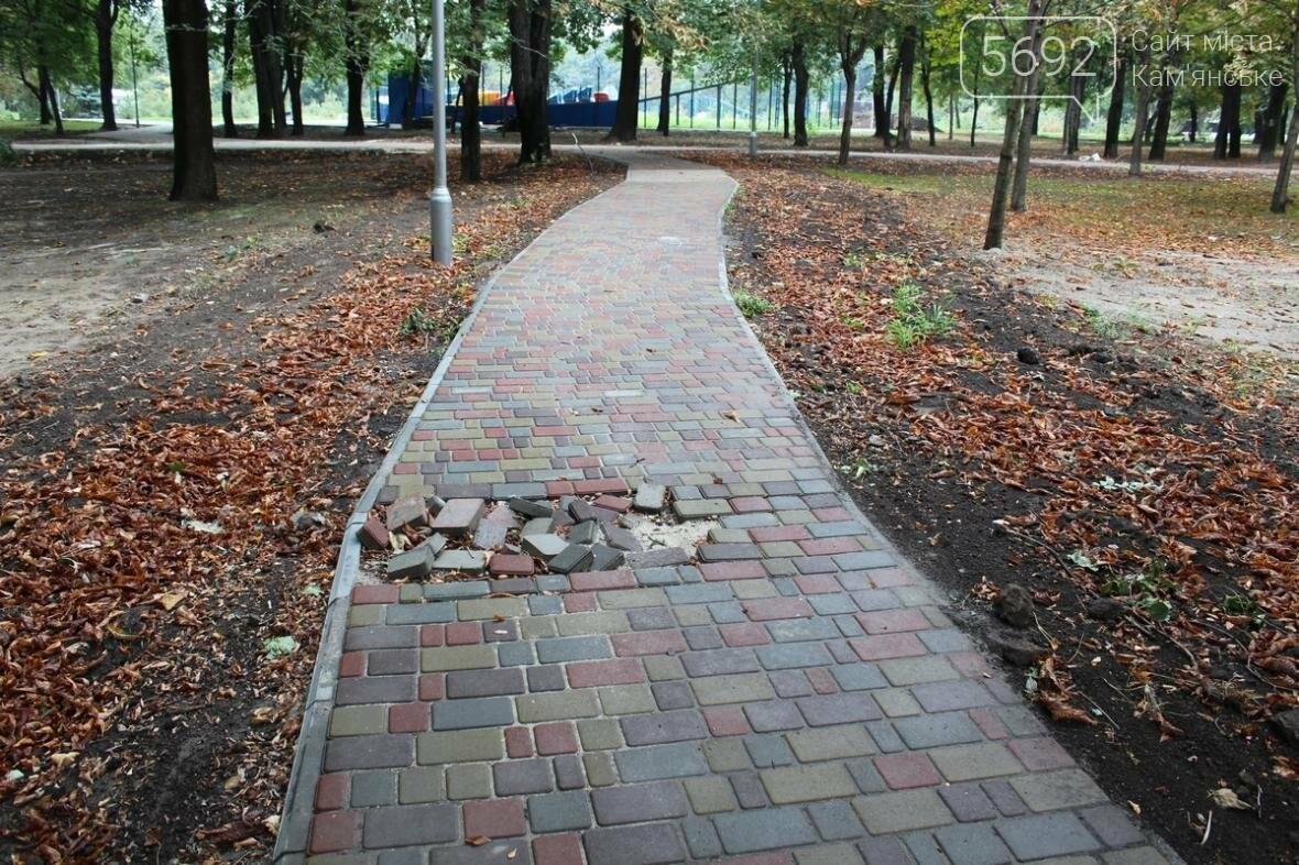 В Каменском парке уже видны «косяки», фото-5