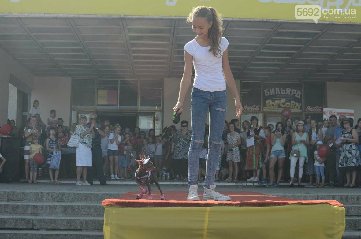 В Каменском дефилировали собаки, фото-1
