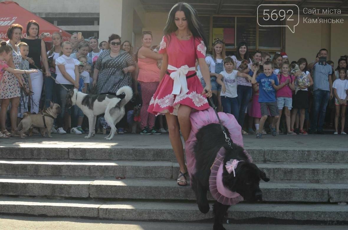 В Каменском дефилировали собаки, фото-8