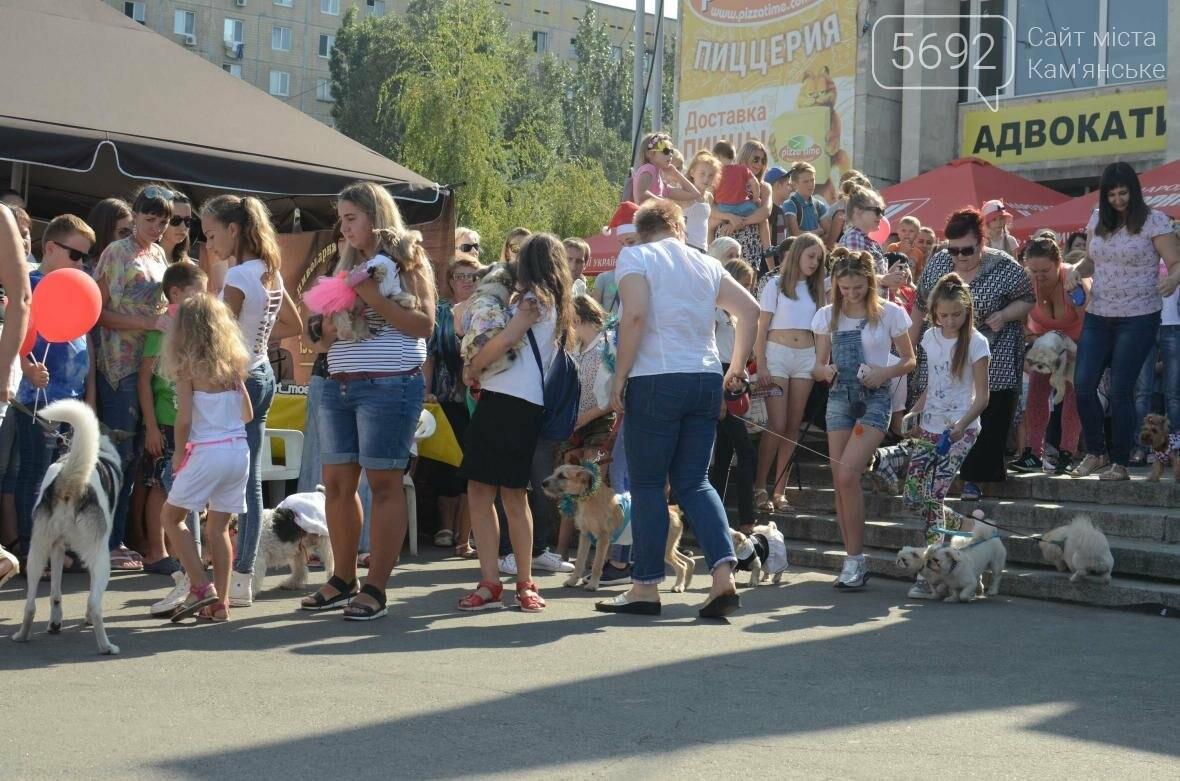 В Каменском дефилировали собаки, фото-16