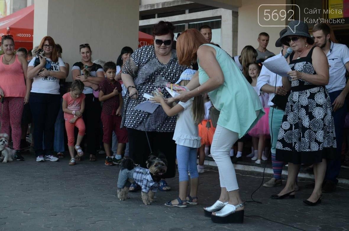 В Каменском дефилировали собаки, фото-10