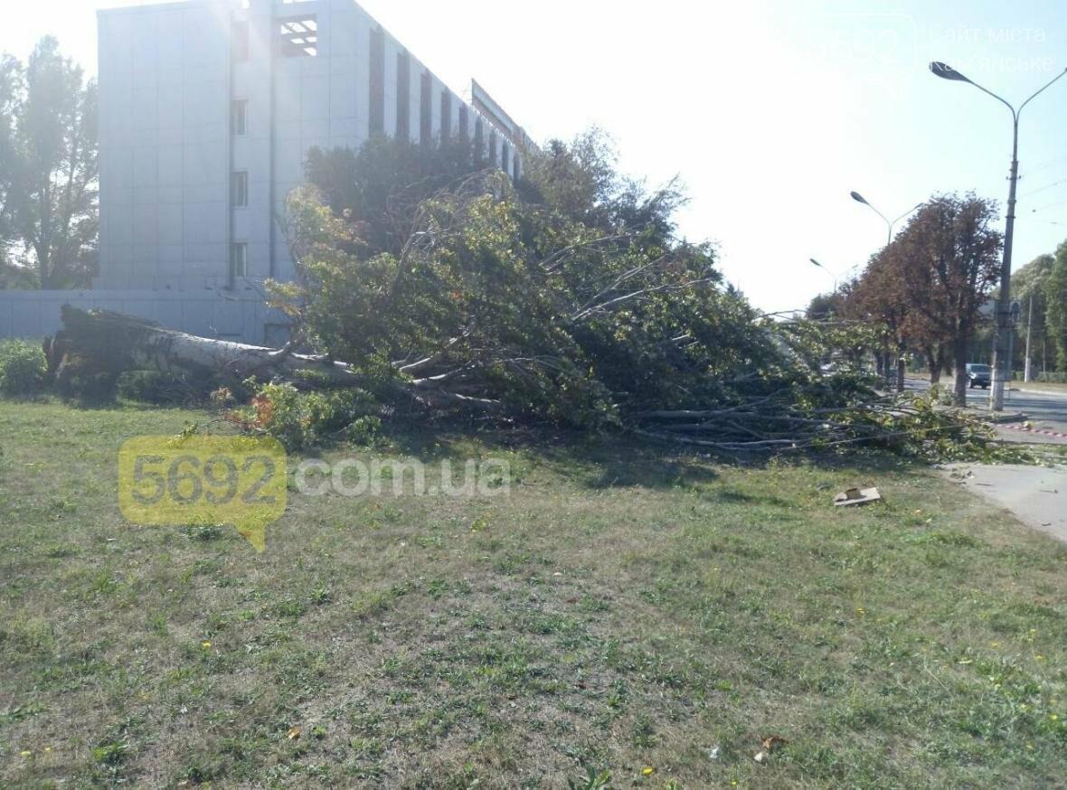 В Каменском упало дерево и зацепило линии электропередач, фото-4
