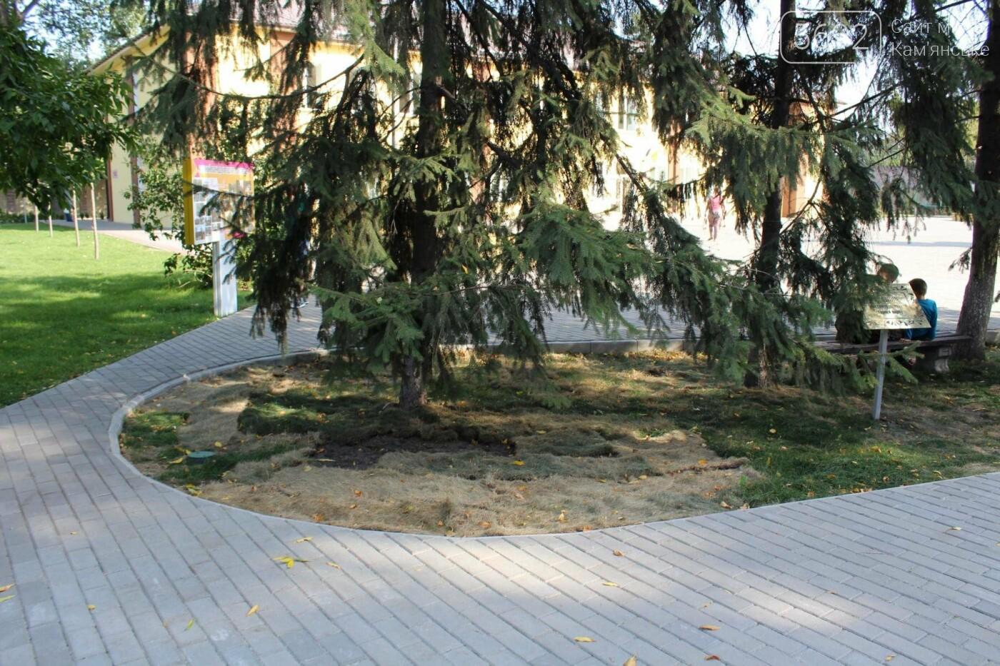 Центральный парк Каменского: задумывали одно, получили другое, фото-11