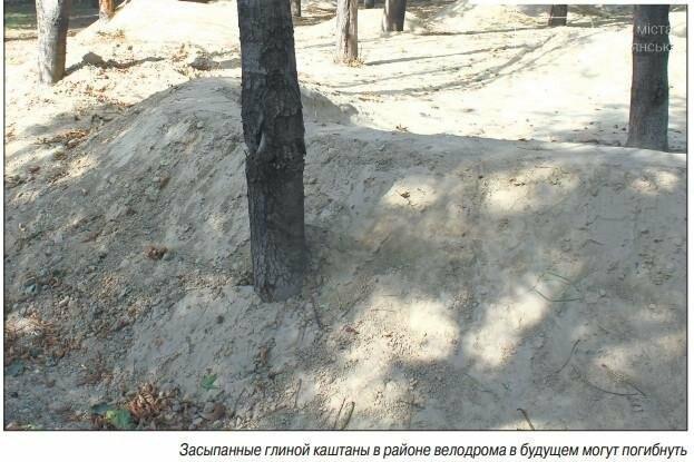 Центральный парк Каменского: задумывали одно, получили другое, фото-3