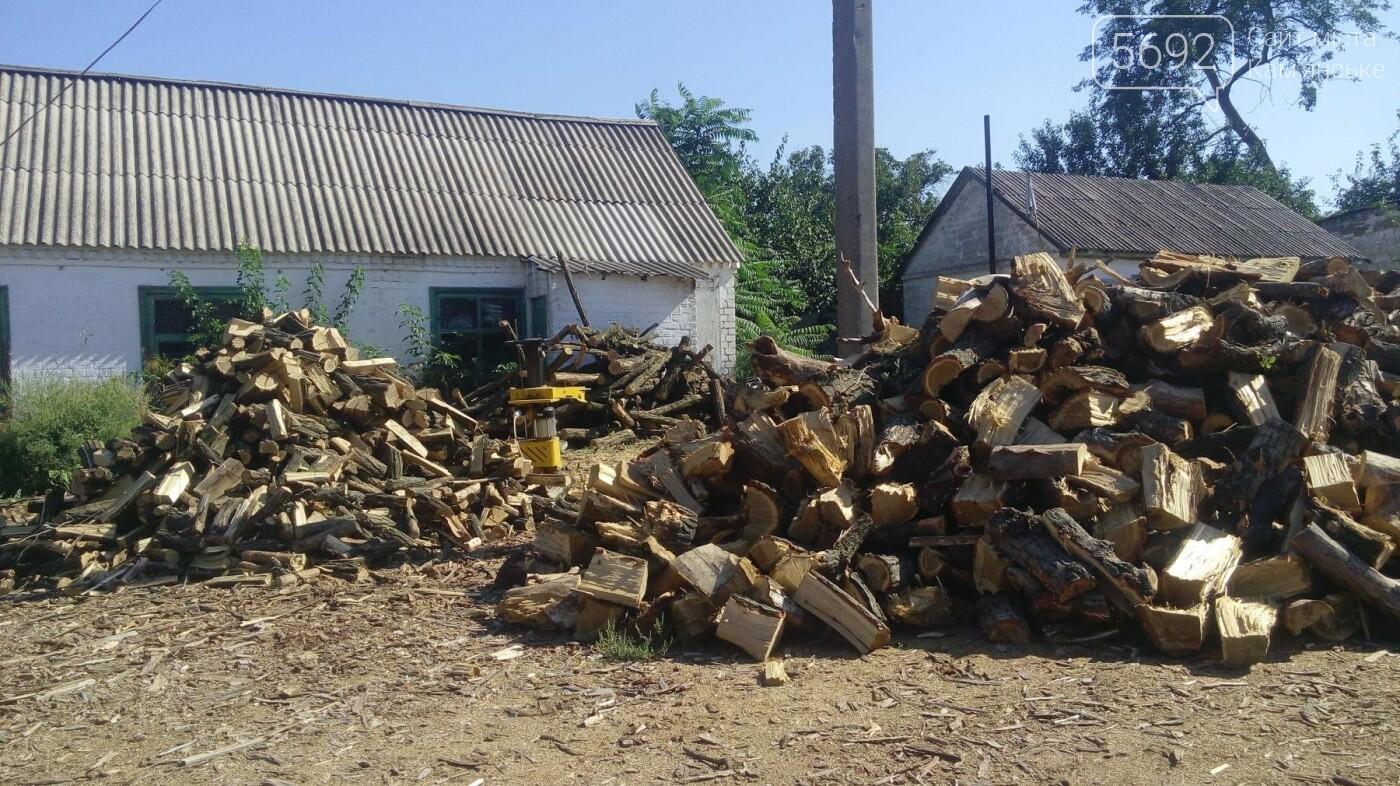 Как работается в Каменском лесхозе, фото-2