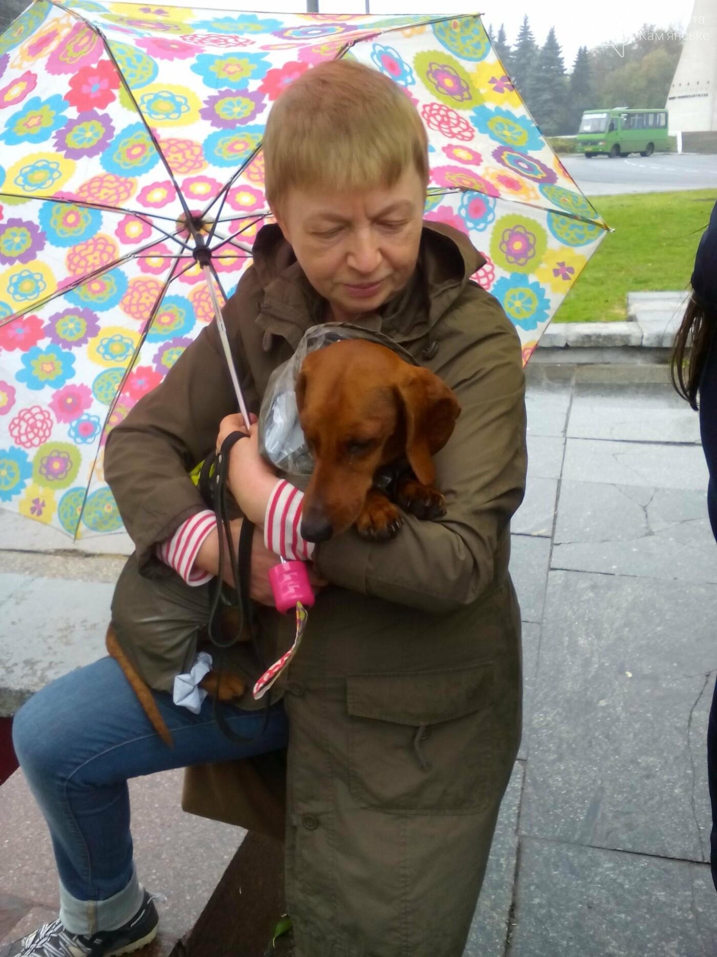 В Каменском прошел марш за права животных, фото-8