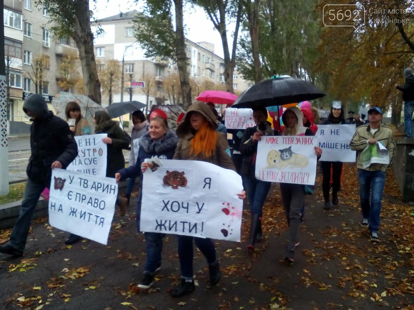 В Каменском прошел марш за права животных, фото-14
