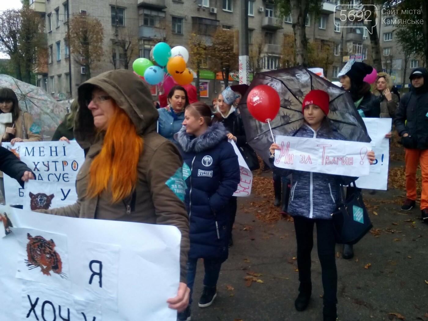 В Каменском прошел марш за права животных, фото-2