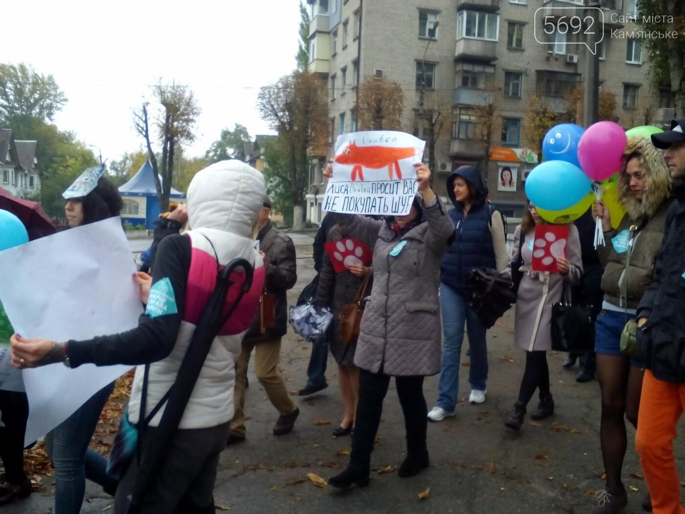 В Каменском прошел марш за права животных, фото-3