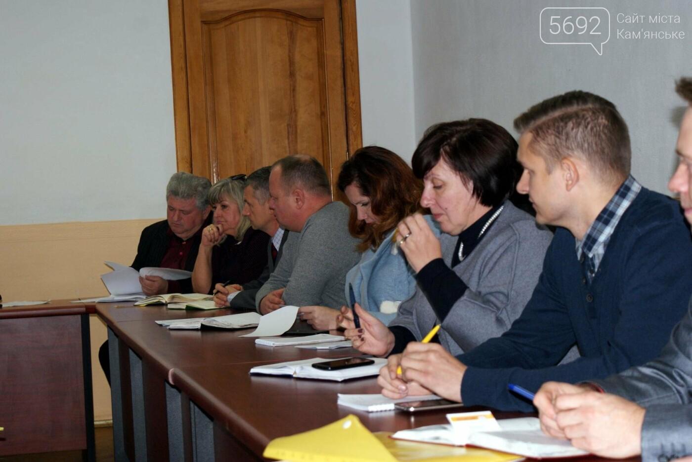 Чиновники Каменского собрались на совещание по вопросу уборки листьев, фото-1