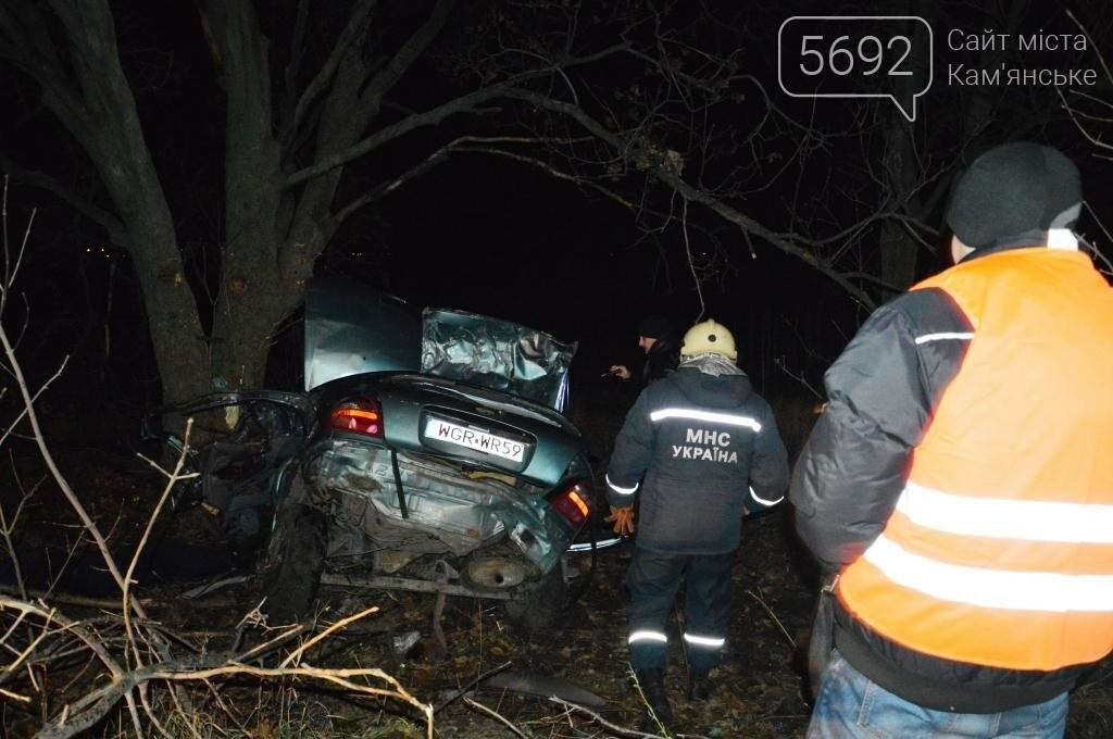 Четверо подростков разбились насмерть в ДТП возле Каменского, фото-2