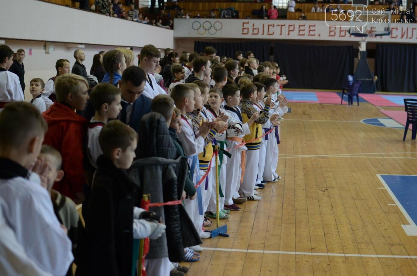 В Каменском стартовал чемпионат Днепропетровщины по тхеквондо, фото-8