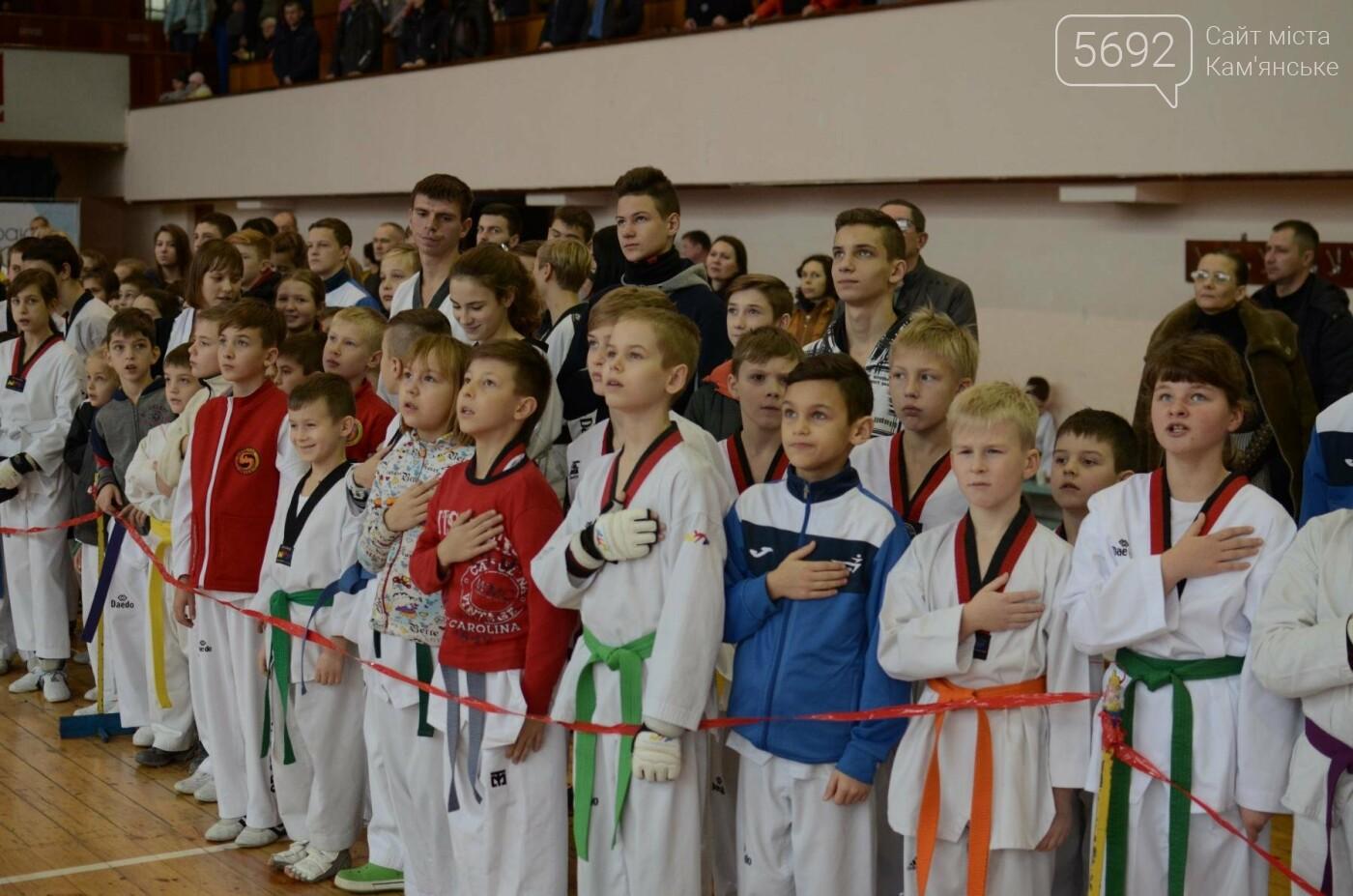 В Каменском стартовал чемпионат Днепропетровщины по тхеквондо, фото-11