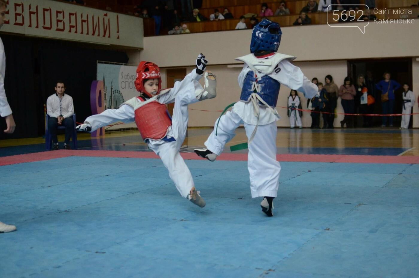 В Каменском стартовал чемпионат Днепропетровщины по тхеквондо, фото-15