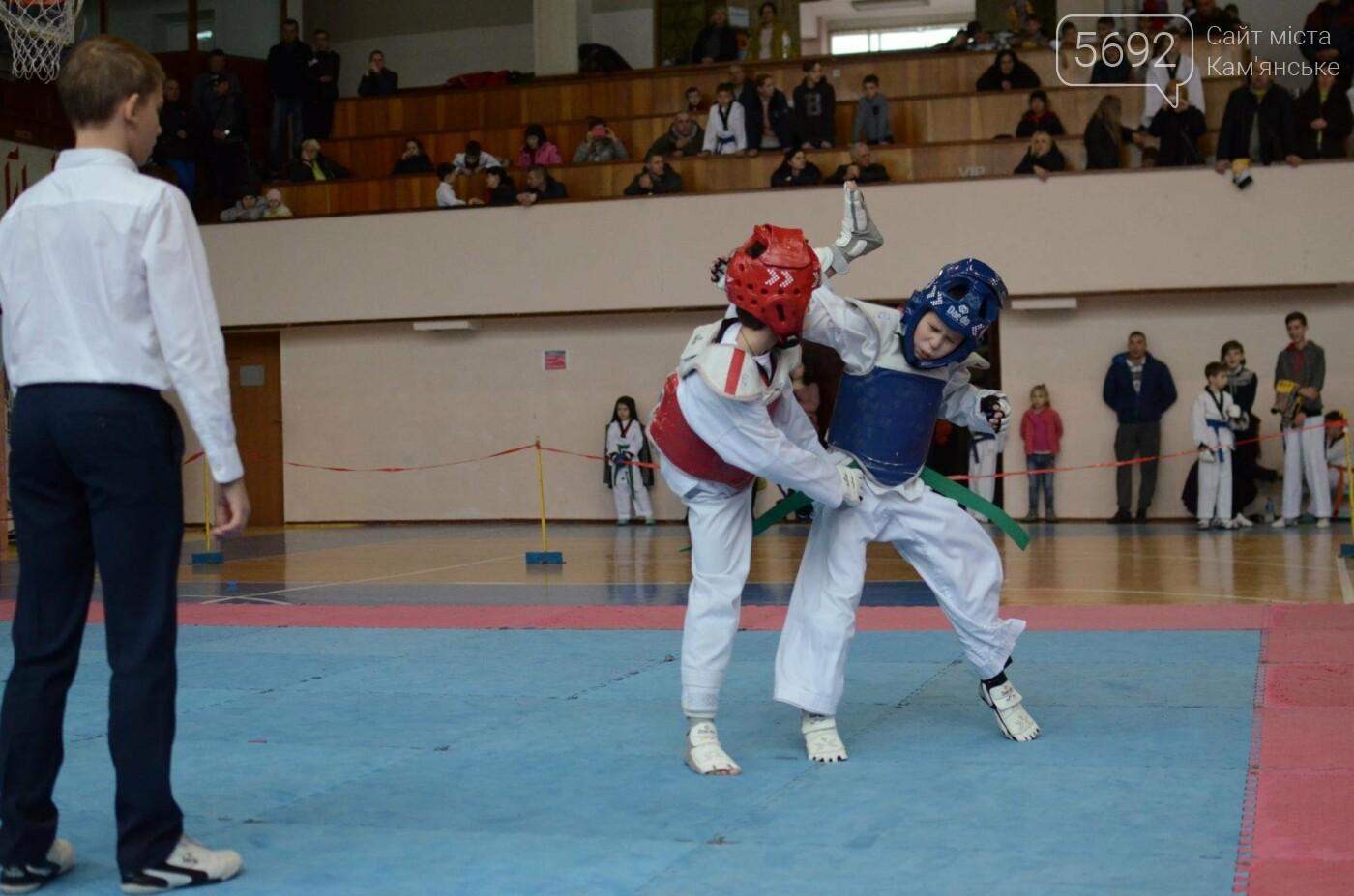 В Каменском стартовал чемпионат Днепропетровщины по тхеквондо, фото-21