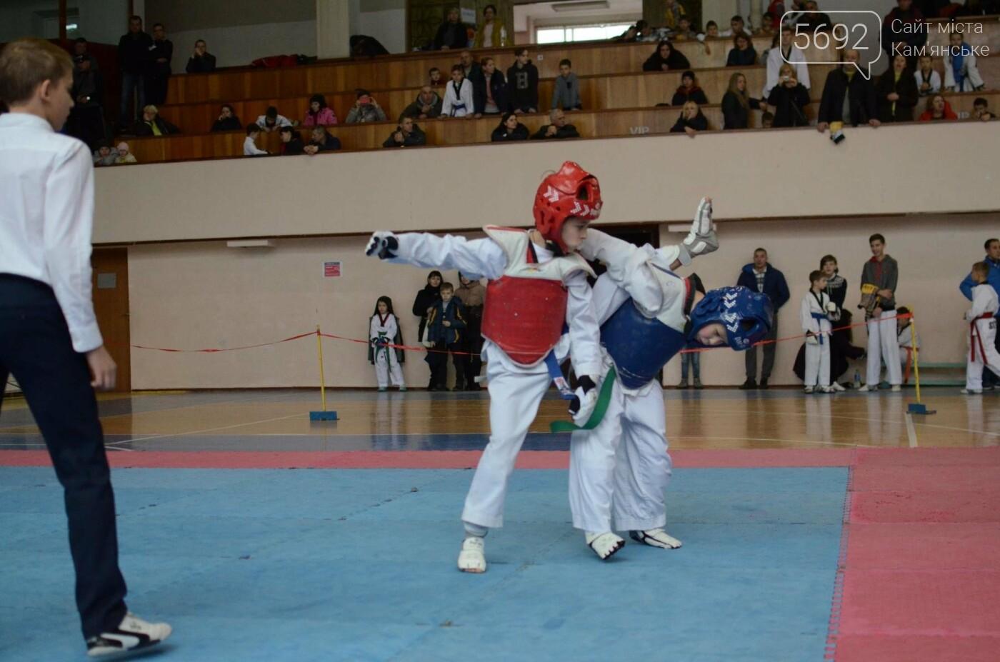 В Каменском стартовал чемпионат Днепропетровщины по тхеквондо, фото-23