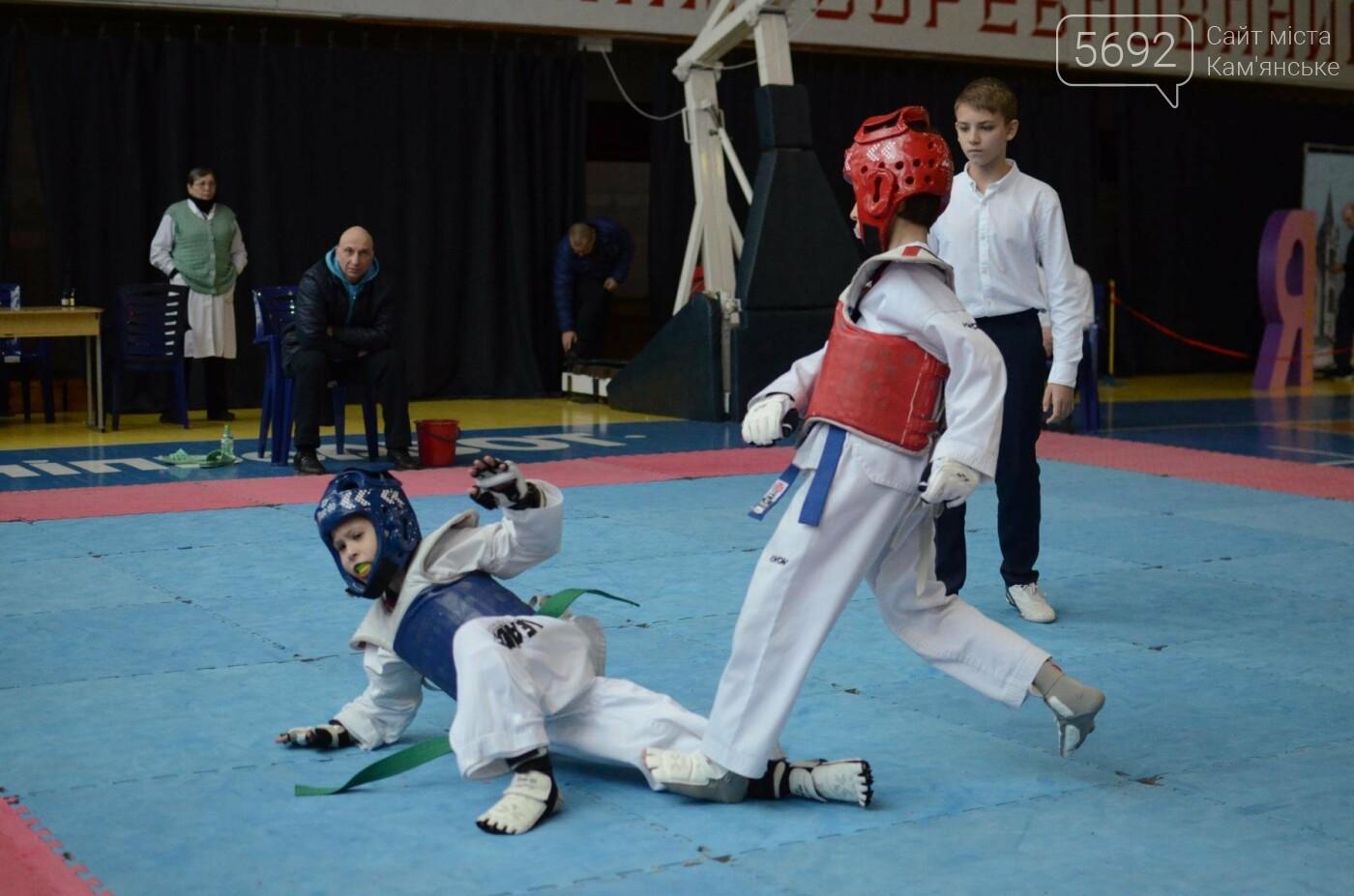 В Каменском стартовал чемпионат Днепропетровщины по тхеквондо, фото-18