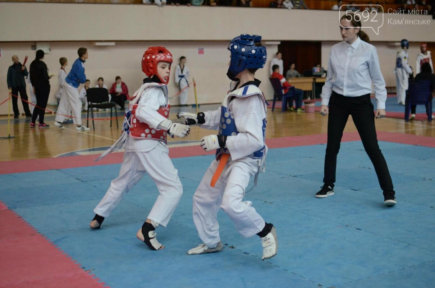 В Каменском стартовал чемпионат Днепропетровщины по тхеквондо, фото-27