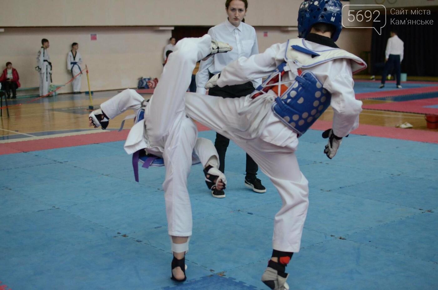 В Каменском стартовал чемпионат Днепропетровщины по тхеквондо, фото-24