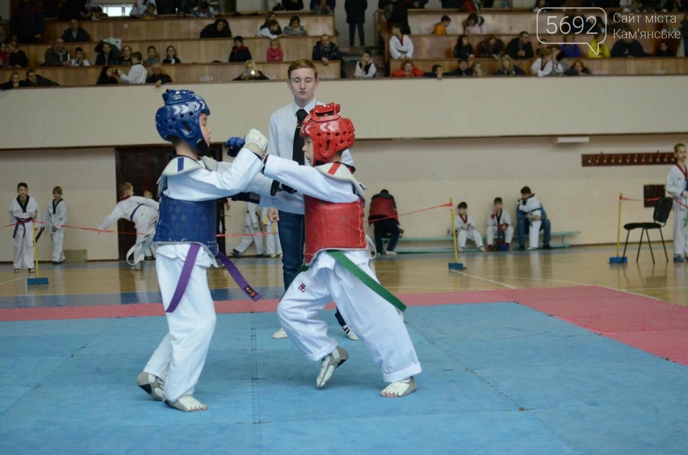 В Каменском стартовал чемпионат Днепропетровщины по тхеквондо, фото-33
