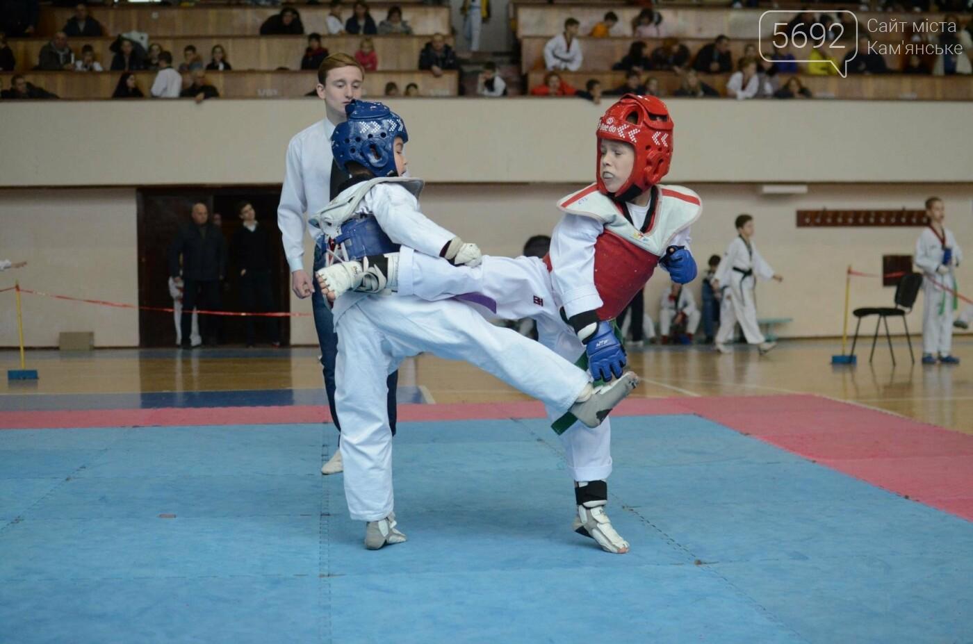 В Каменском стартовал чемпионат Днепропетровщины по тхеквондо, фото-31