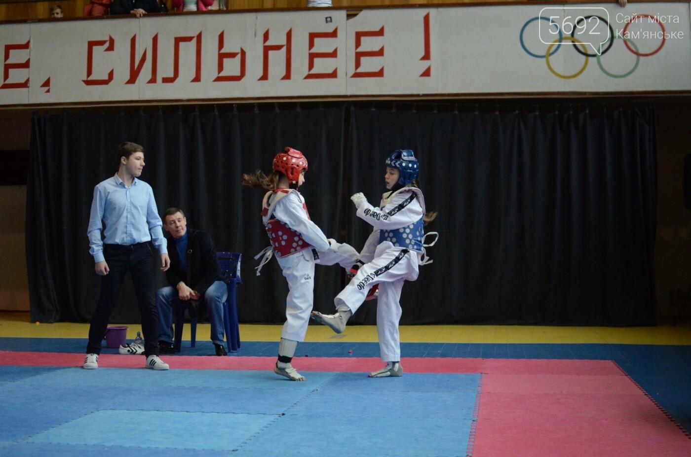 В Каменском стартовал чемпионат Днепропетровщины по тхеквондо, фото-25