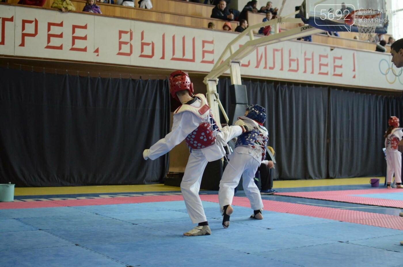 В Каменском стартовал чемпионат Днепропетровщины по тхеквондо, фото-32