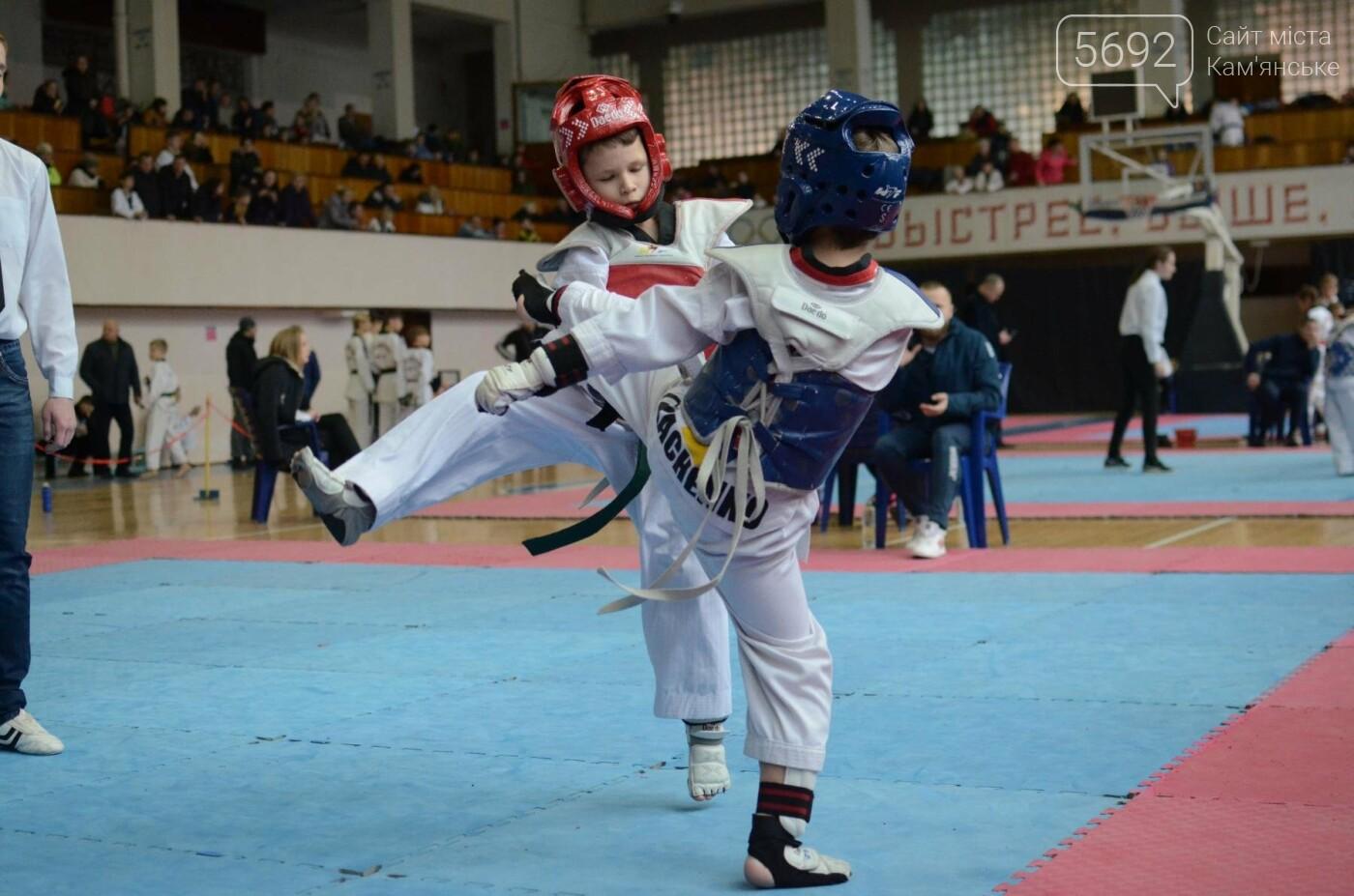 В Каменском стартовал чемпионат Днепропетровщины по тхеквондо, фото-39