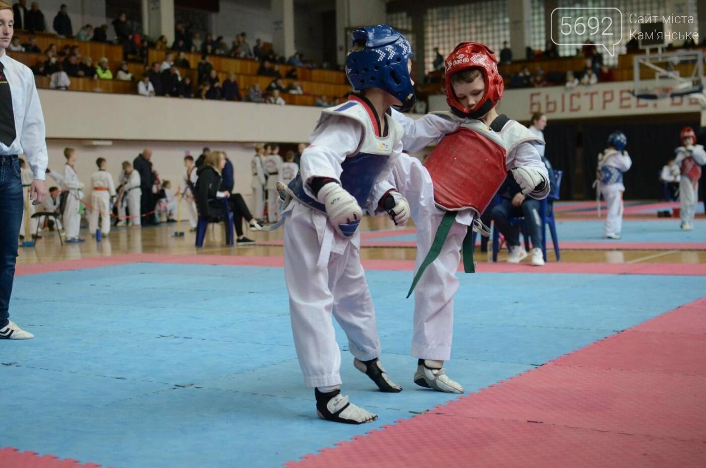 В Каменском стартовал чемпионат Днепропетровщины по тхеквондо, фото-40