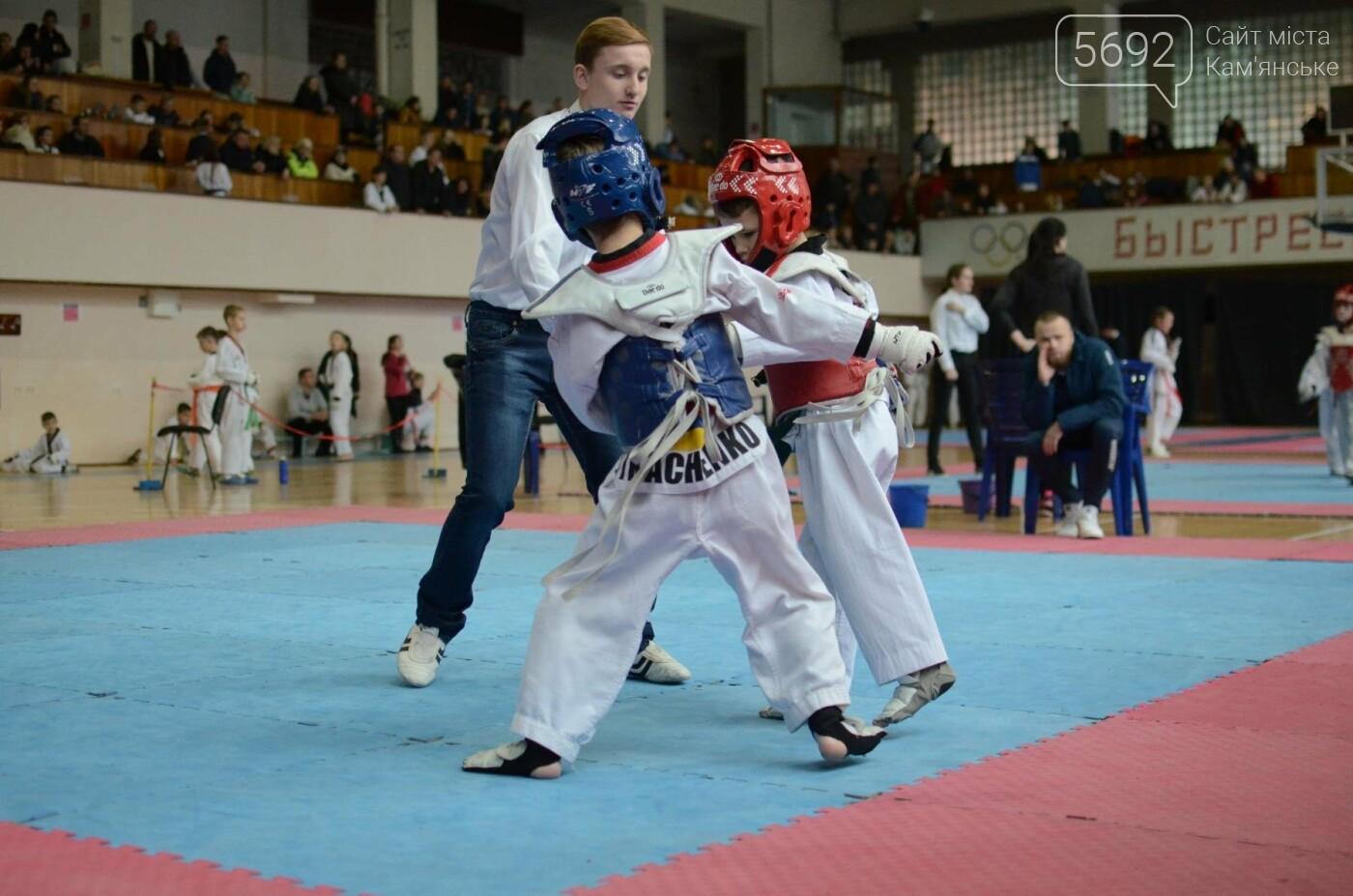 В Каменском стартовал чемпионат Днепропетровщины по тхеквондо, фото-41