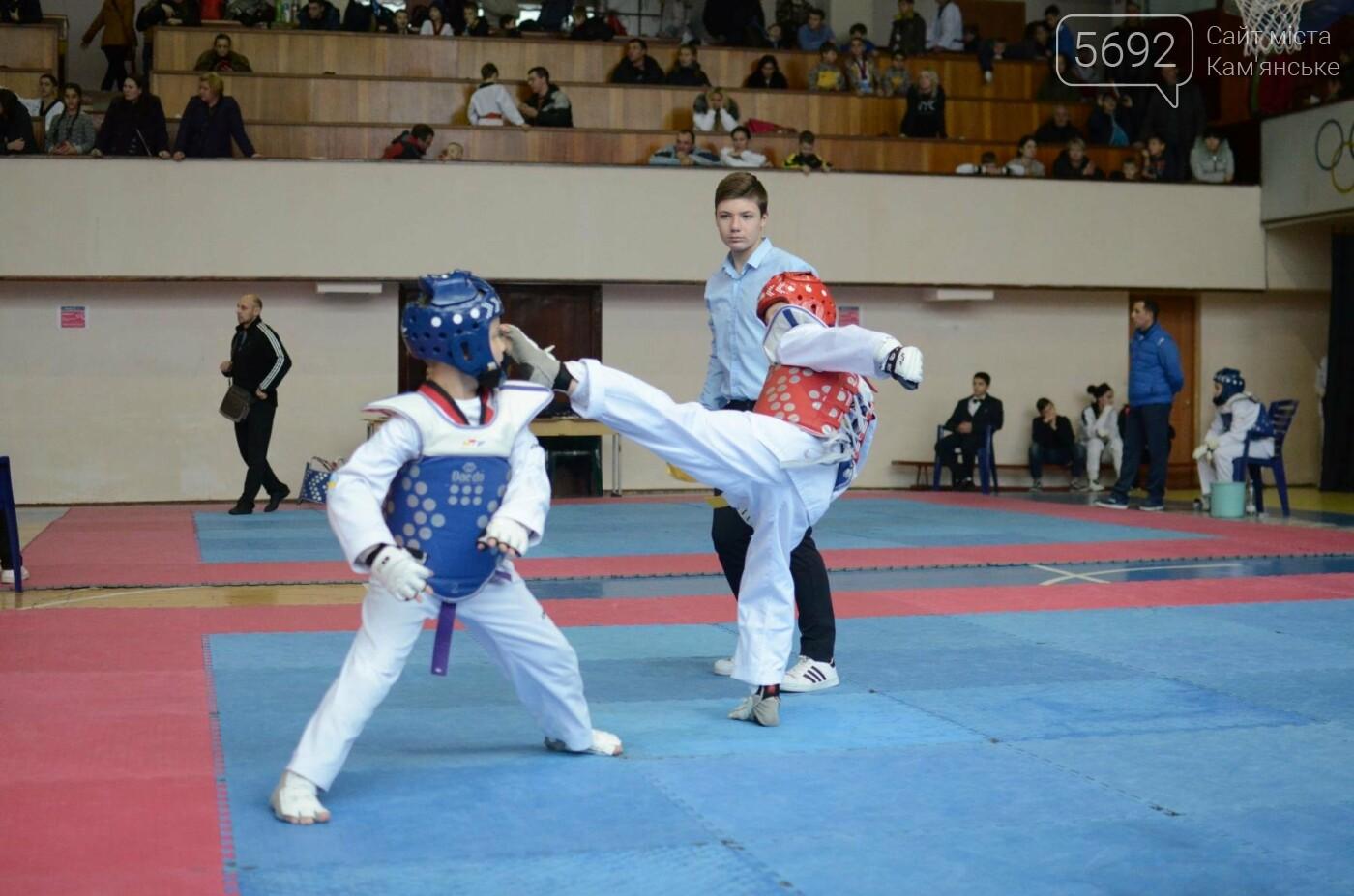 В Каменском стартовал чемпионат Днепропетровщины по тхеквондо, фото-43