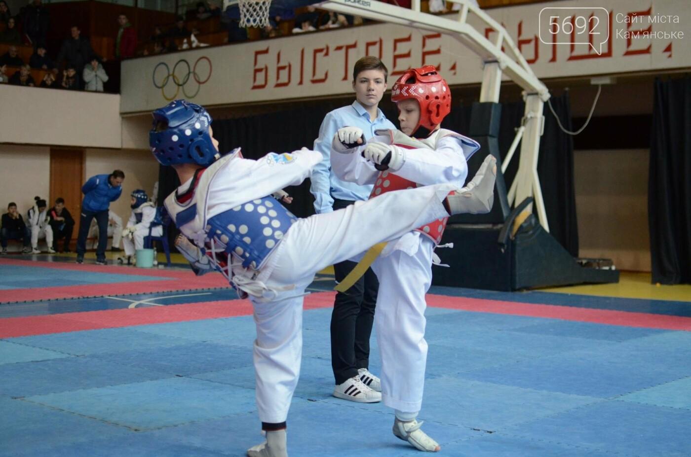 В Каменском стартовал чемпионат Днепропетровщины по тхеквондо, фото-44