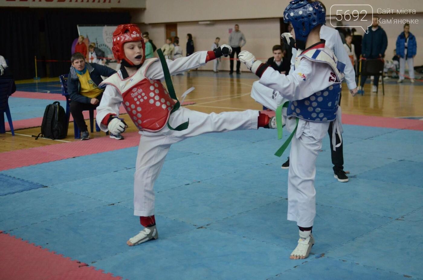 В Каменском стартовал чемпионат Днепропетровщины по тхеквондо, фото-45