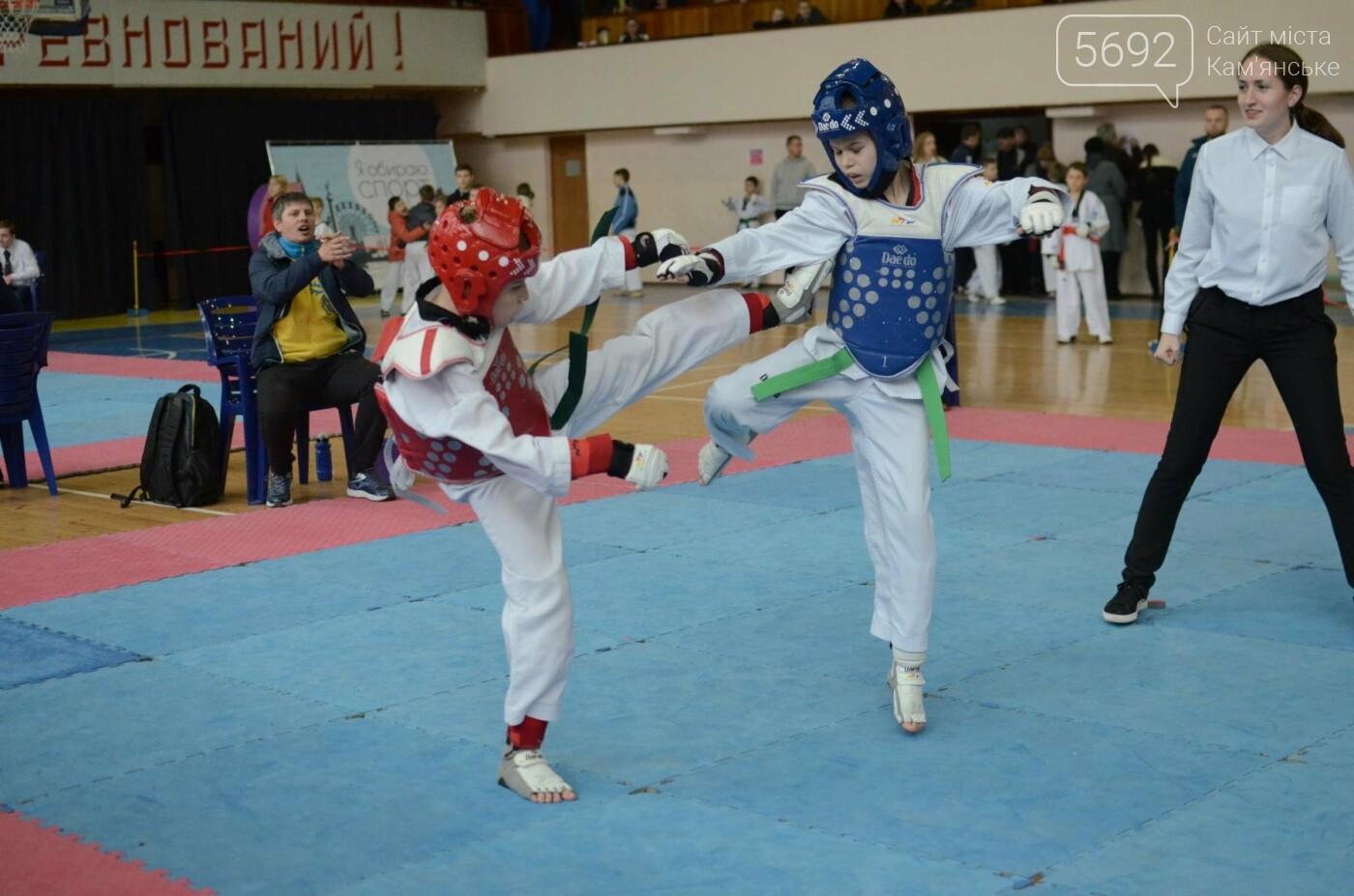 В Каменском стартовал чемпионат Днепропетровщины по тхеквондо, фото-46