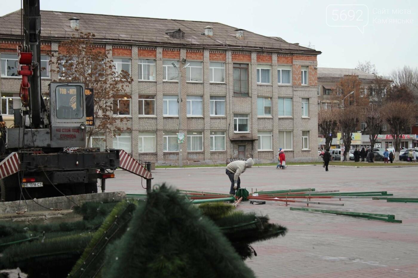 Главную елку Каменского взяли в аренду, фото-5