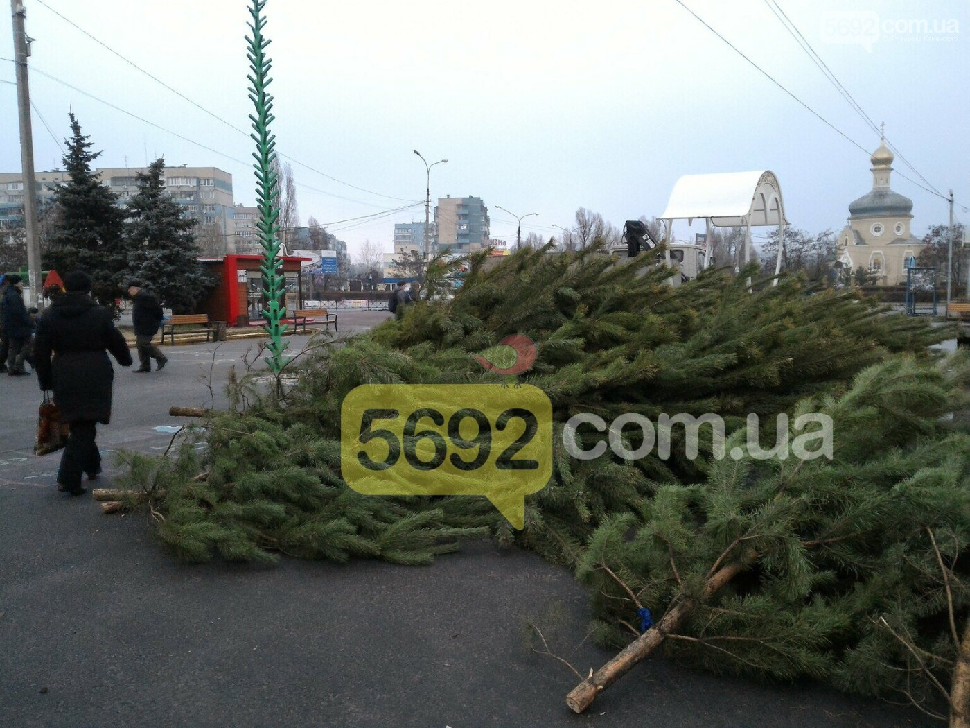 На левобережье Каменского начали собирать новогоднюю елку, фото-2