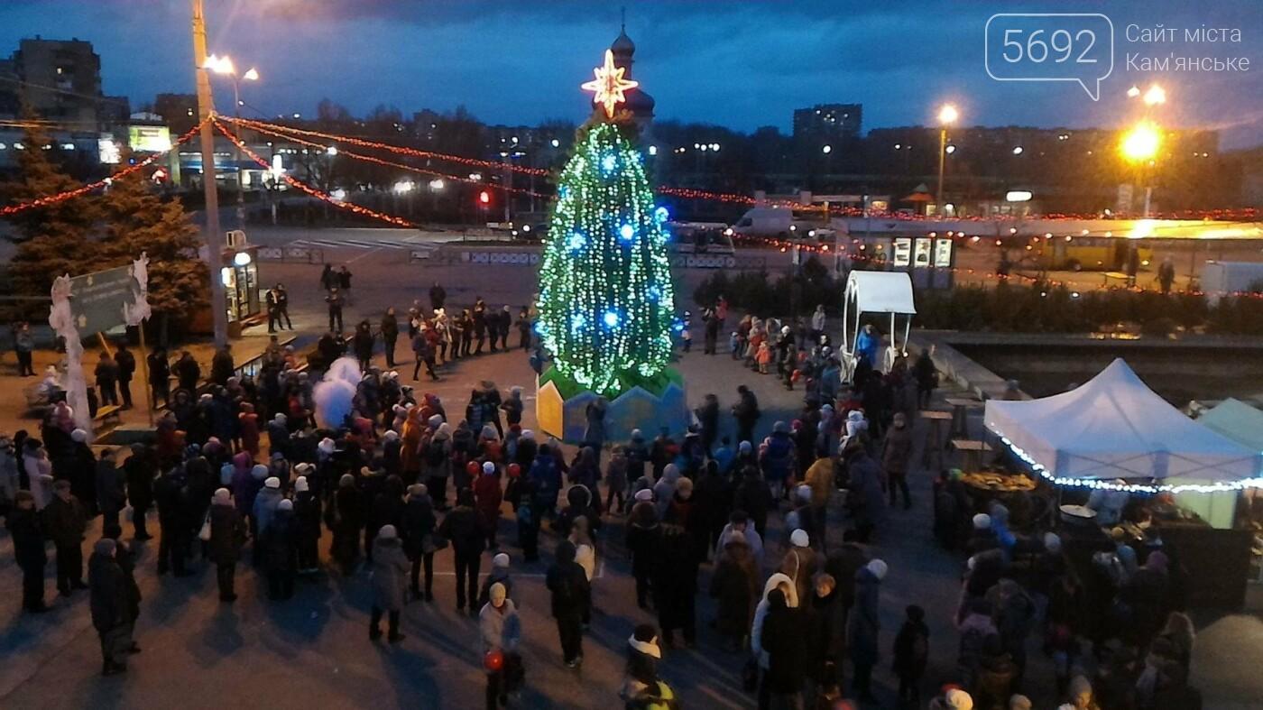 В Каменском открыли новогоднюю елку, фото-3