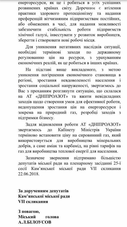 Депутаты Каменского обратились в Кабмин с просьбой возобновить работу «ДнепрАзота», фото-5