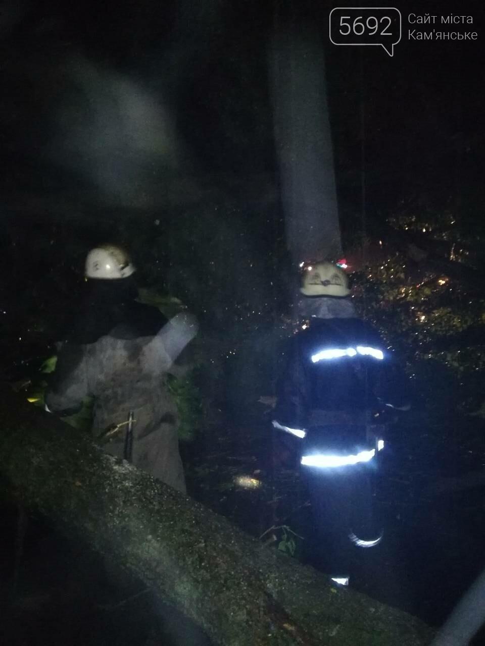 Спасатели Каменского ликвидируют последствия стихии, фото-1