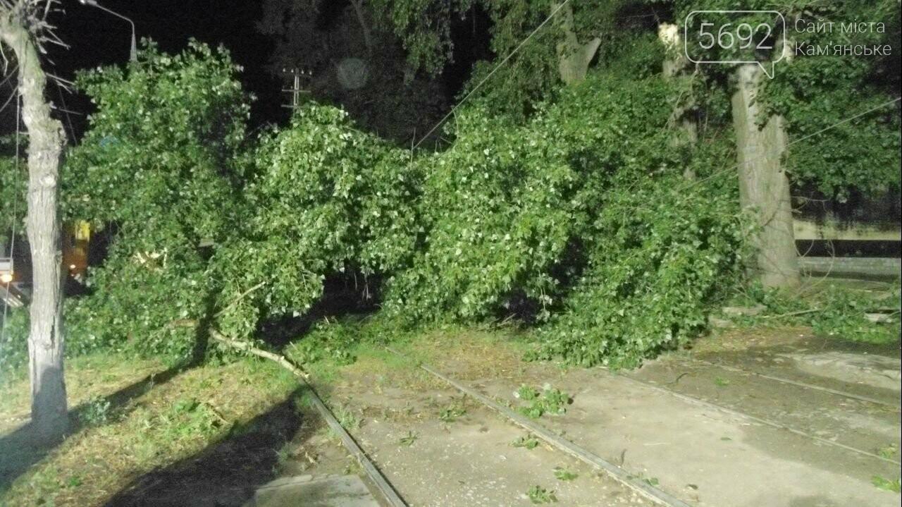 Спасатели Каменского ликвидируют последствия стихии, фото-4